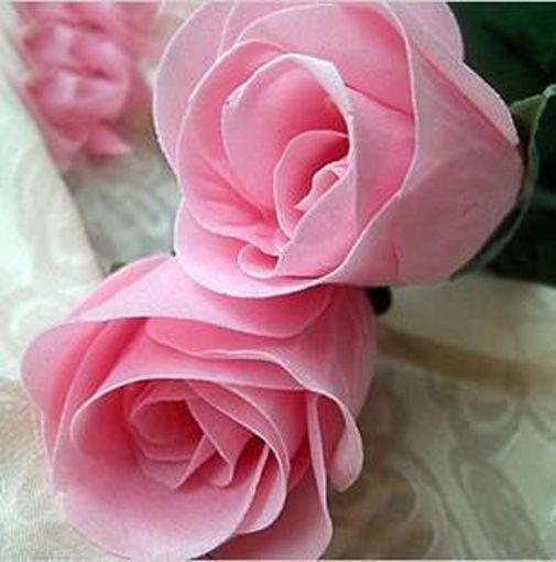 China Rare Pink Rose Flower Give Favorite Lover Gift 100 Seeds