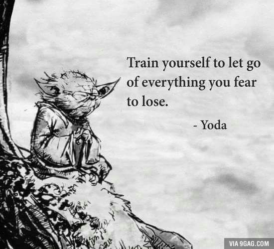 Learn the wisdom, you shall..