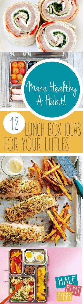 Make Healthy A Habit! 12 Lunch Box Ideas For Your Littles. Lunchbox Ideas for Kids, Lunches for Kids, Kid Stuff, Kid Recipes, Recipes for Picky Kids, Picky Kid Snack Recipes, Healthy Recipes for Your Kids
