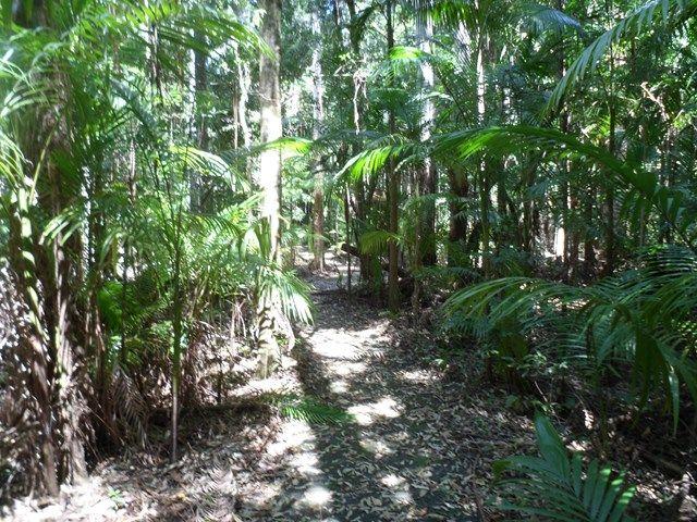 Somerset Trail - Mt Mee - Aussie Bushwalking