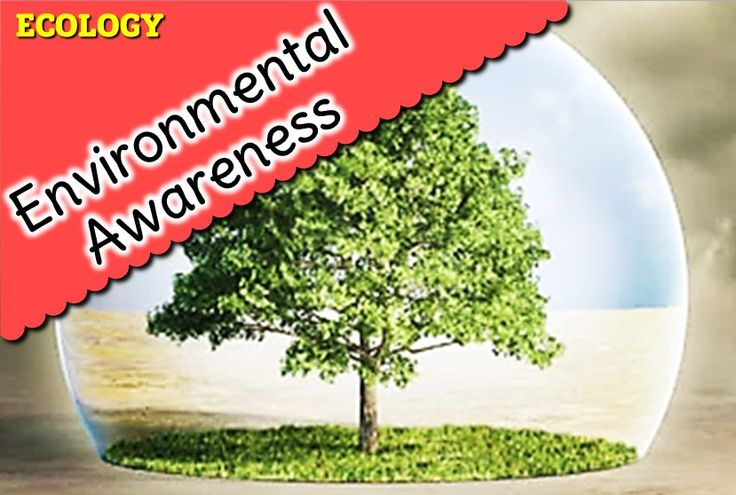Mass media for environmental awareness