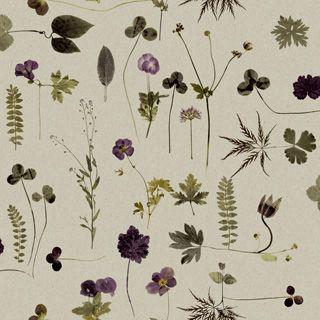 Botanica 3661 - Eco Simplicity - Eco Wallpaper