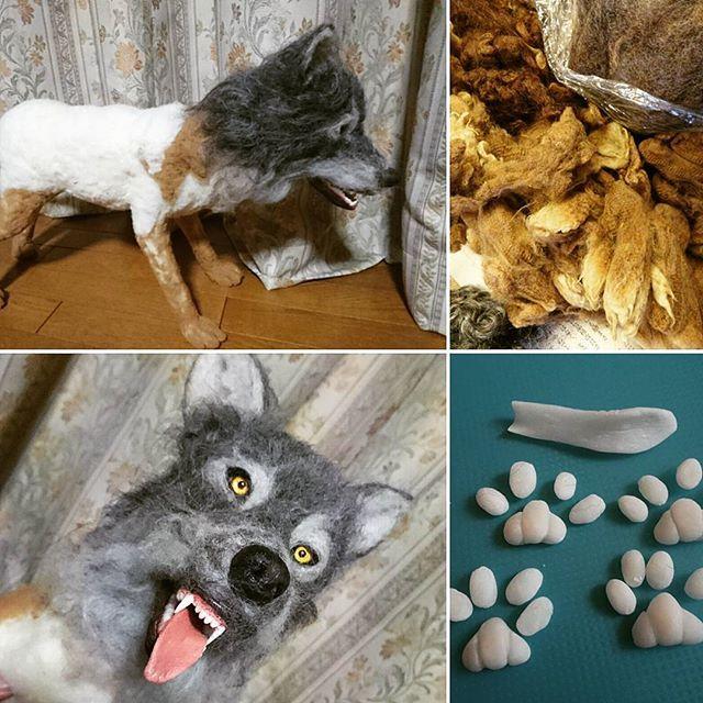 【zokeiforce】さんのInstagramをピンしています。 《狼ライブ造形⤴ 羊毛フェルト狼造形も、いよいよボディの 植毛です❤❤ リアルさを出す為、  刈り取った、油の付いた羊の原毛を植毛  合わせて肉球も樹脂粘土で製作 根気との戦い(笑)  #woolfelt#WOLF#羊毛フェルト狼 #手作り狼#handmade#original #アラスカ#シベリア#大自然#狩人 #photography#植毛#羊#リアル #樹脂粘土#造形ライブ#Japan #吠える#唸る#走る#サーキットの狼 #ハマナカ#森#動物#野生》
