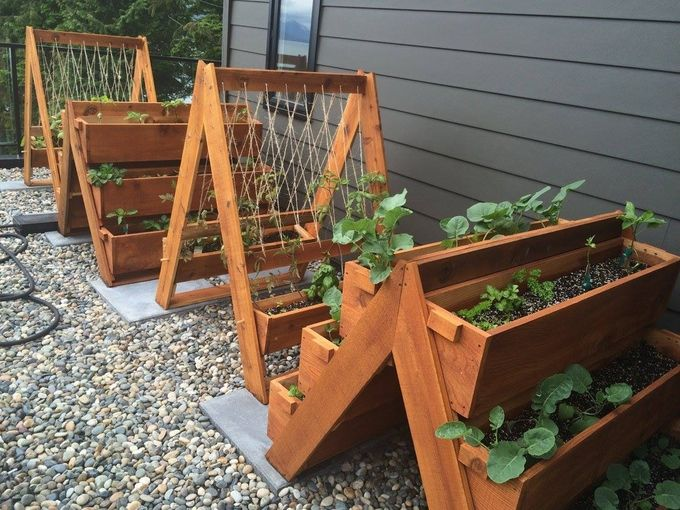 Urban Planters: Innovative Gardening Solutions for everyone