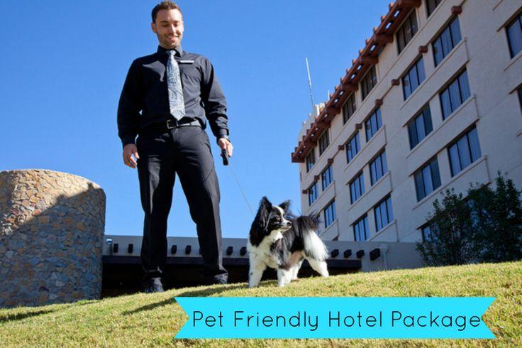 Pet Friendly Hotels Las Cruces