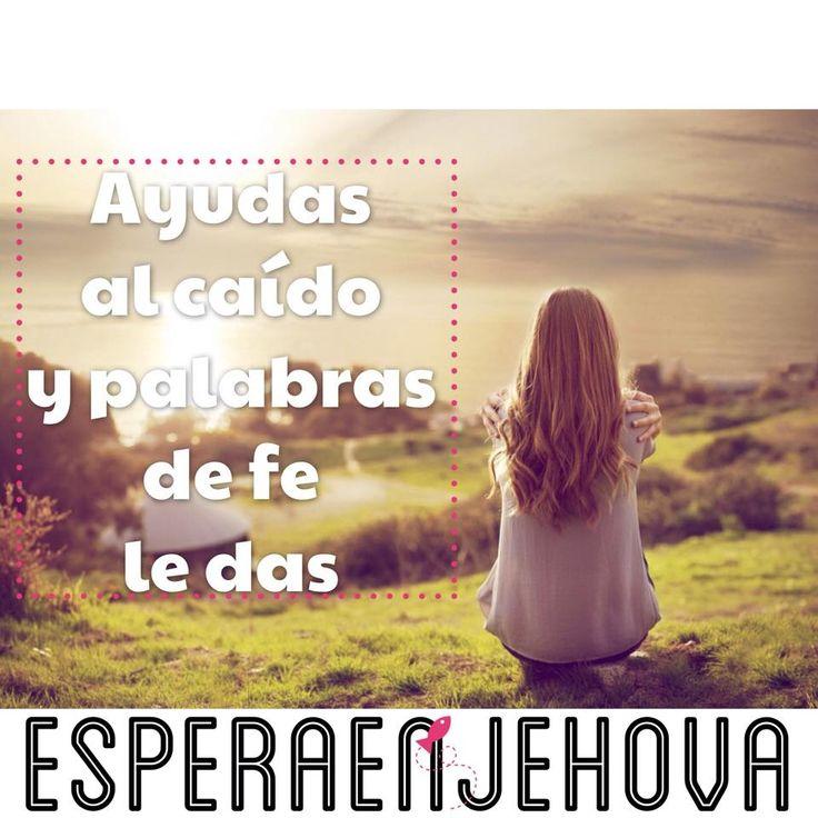 """""""Sobre todo, tomad el escudo de la fe, con que podáis apagar todos los dardos de fuego del maligno."""" - Efesios 6:16   No te olvides de seguirnos en Espera en Jehova, Tu Dios   Ánimos y bendiciones!"""