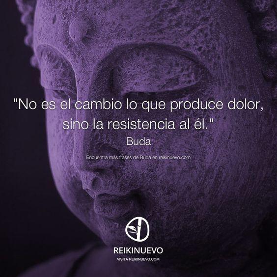 Buda: Lo que produce dolor  http://reikinuevo.com/buda-lo-que-produce-dolor/: