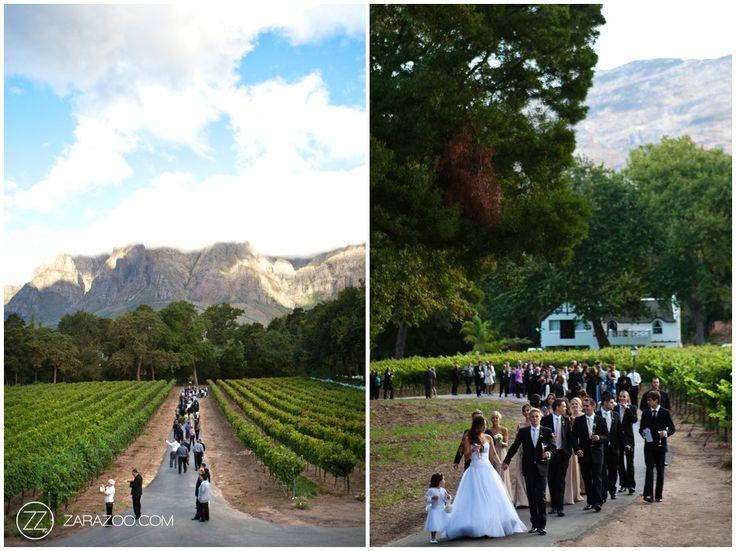 Top ZaraZoo Wedding