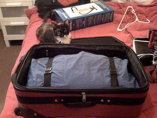 Do Laundry While Traveling