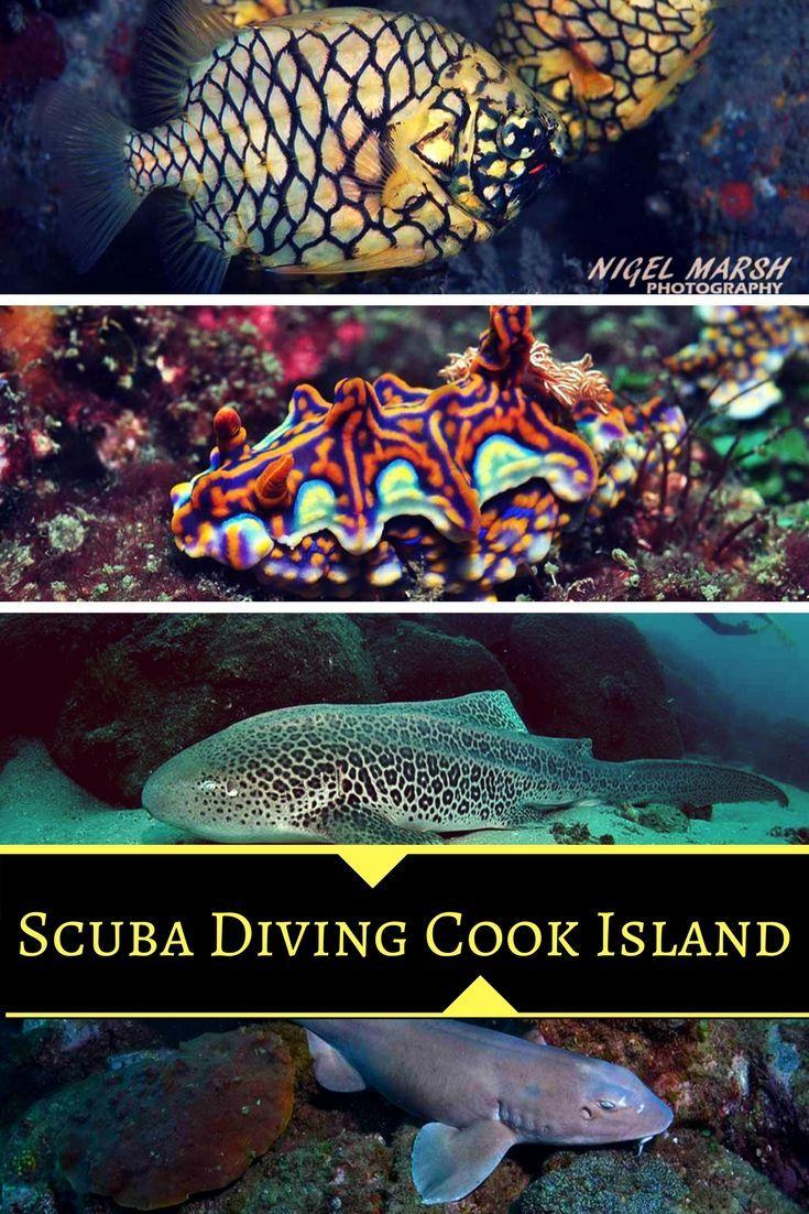 Australia Underwater Map.Scuba Diving Cook Island Australia Scuba Diving Travel Map