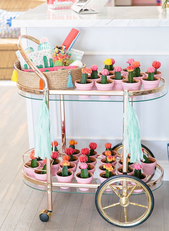 Fun & Playful Cactus Party - Inspired By This