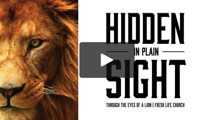 Fresh Life Church | Hidden in Plain Sight|sept. 18