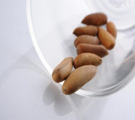 Pine nuts have a light, nutty tang and come packed with calories, vitamins, antioxidants and minerals. Break out the open and relish wellness.