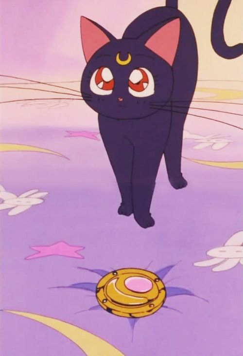 Passion Sailor Moon