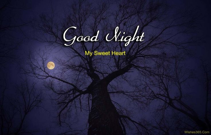 Romantic Good Night SMS Images
