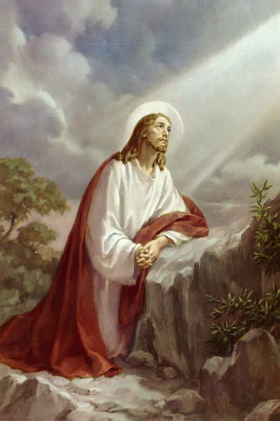Sorrowful Mysteries of the Most Holy Rosary Scriptural Audio #Sorrow