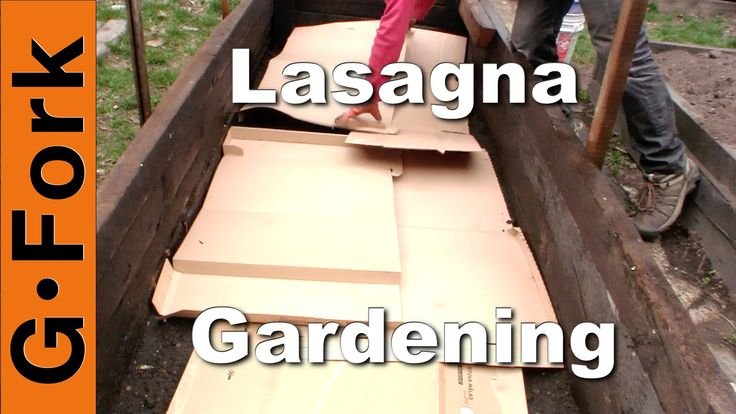 302 Best Images About Lasagna Gardening And Composting On