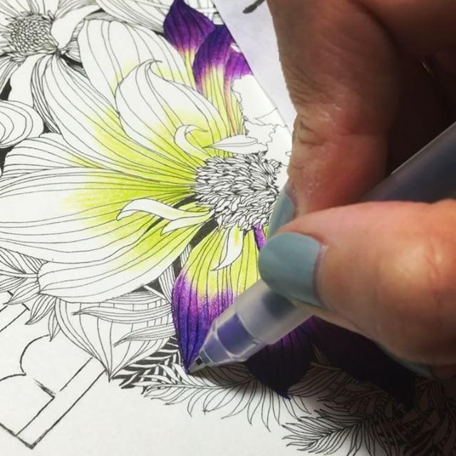 Coloring Book Pages Prismacolor Colouring Pencil Garden
