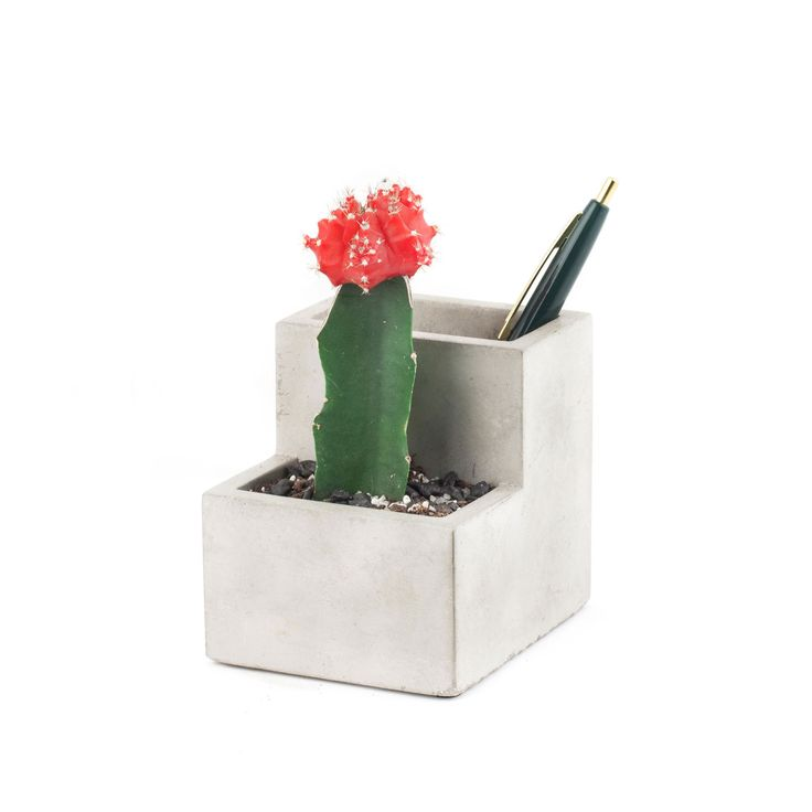 Bring some urban flair and a touch of greenery to your desk with this dual purposed Concrete Desktop Organiser