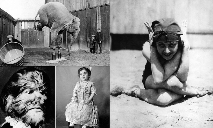 Incredible pictures show the realities of the Victorian circus #DailyMail