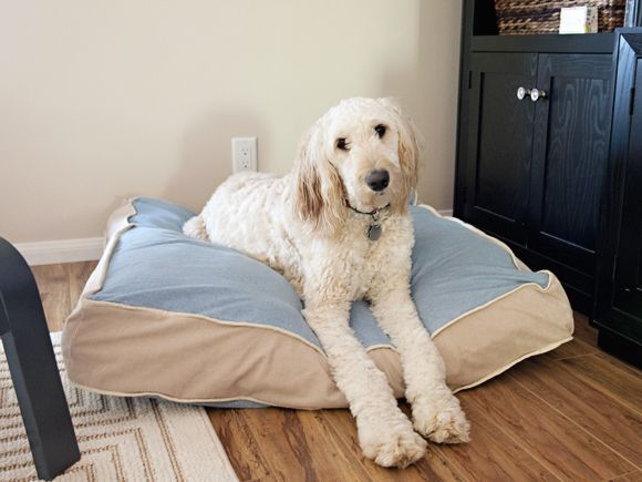 Do You Love Your Fur Baby As Much As I Love Mine? Then Make A New Bed For Them! | Fab You Bliss