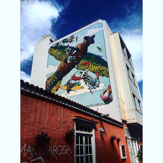 #アート #スペイン #旅行 #トラベル #instatraveling #art #streetart #gatekunst #kunst #graffiti #spain #tenerife #instalike #instadaily #travel #travelgram #tagsforlikes by (alice.maiko). art #tagsforlikes #graffiti #トラベル #travelgram #kunst #spain #instadaily #アート #streetart #旅行 #スペイン #instatraveling #gatekunst #instalike #travel #tenerife