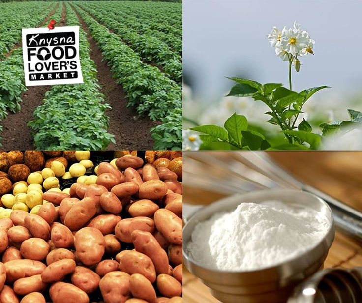 Research suggests that #potatoes are the lowest cost source of dietary potassium and reduces high blood pressure. #FLM #Knysna