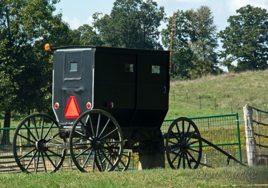 amish-buggy-arkansas  Salem, AR
