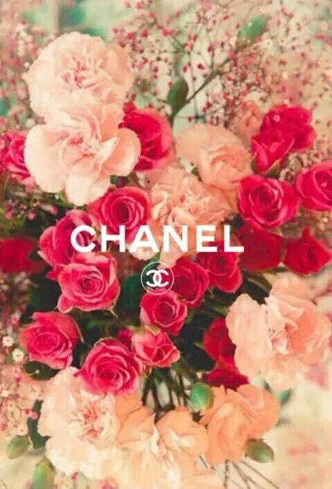 Chanel rose flowers