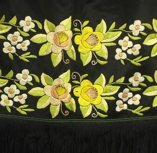 Slovak Ethnic Folk Costume Embroidered Apron Jablonice West Slovakia Kroj Flower
