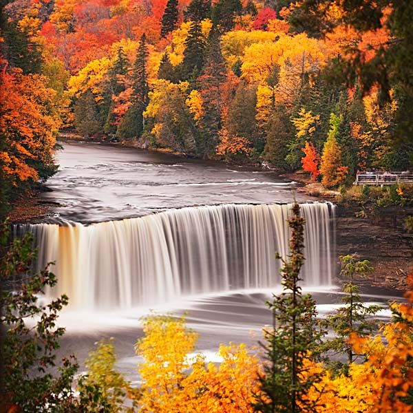 Tahquamenon Falls, MI-as beautiful in person as they are in this photo.  Well worth the trip to northern Michigan.