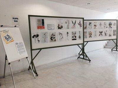 Exposición en la Biblioteca del Campus de Jerez.