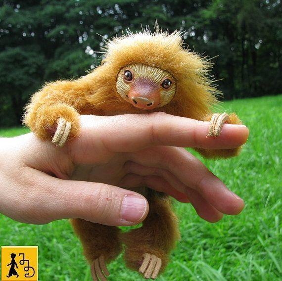 「熱帯雨林の動物のリスト」のおすすめアイデア 25 件以上 ...