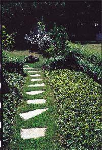 I planeringen av trädgården är gångvägar och trampstigar en viktig del. Gångarna ska locka till en promenad runt i trädgårdens olika rum.