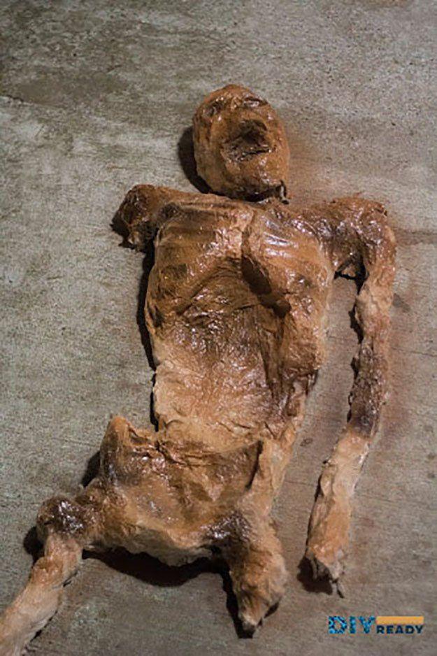 Decayed Corpse Halloween Prop