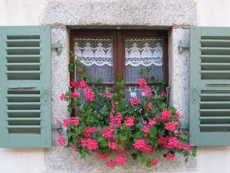 Alpine window