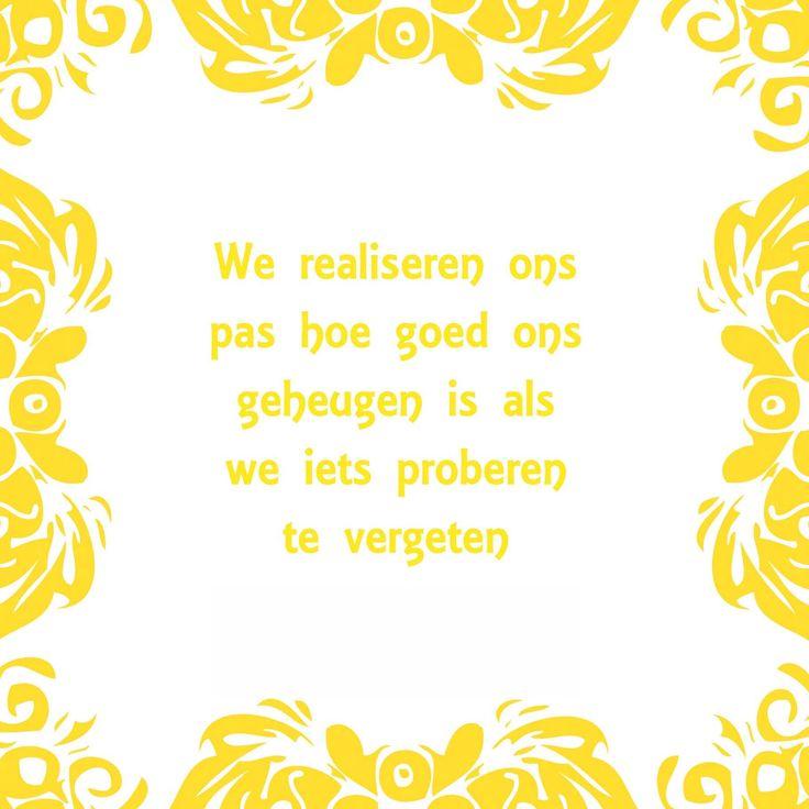 Tegeltjeswijsheid.nl - een uniek presentje - We realiseren ons pas
