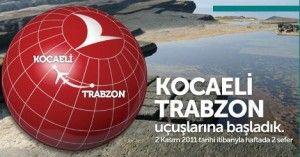 kocaeli türk hava yolları telefon numarası