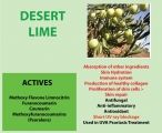 Desert Lime contains active ingredients that can assist with hydration, support the production of healthy collagen and help with wound healing.