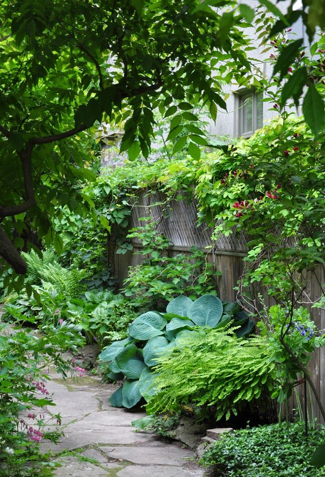 Private Garden Mississauga On Happy First Day Of Spring In Today S Post I Have Ten Ideas For That Long Awkwa Narrow Garden Shade Garden Design Shade Garden