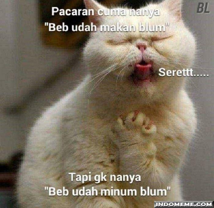 Pacaran cuma nanya makan doang - #GambarLucu #MemeLucu - http://www.indomeme.com/meme/pacaran-cuma-nanya-makan-doang/