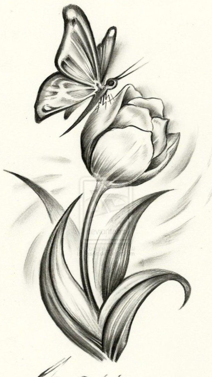 Flower With Butterfly Easy Flower Drawings Pencil Drawings Of Flowers Realistic Flower Drawing