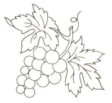 Grapevine Design