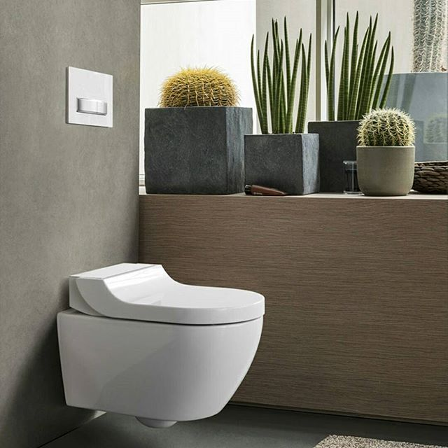 What about this plants to suit your bathroom? - Fresh Decor Ideas  WC e Bidet AquaClean Tuma 2017 design Christoph Behling for @geberit_group  #designbest #succulentlover #bathroomidea • • • • • • •  #интерьер #дизайнинтерьера #архитектура #дизай #decoraç