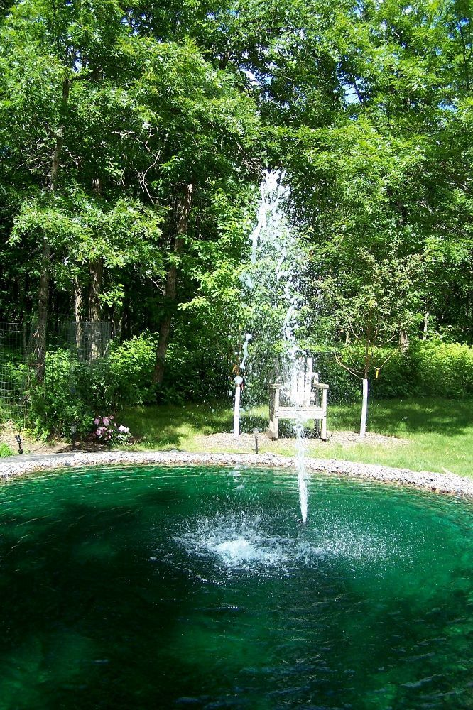 44 best images about garden and farm on pinterest yard for Garden reflecting pool