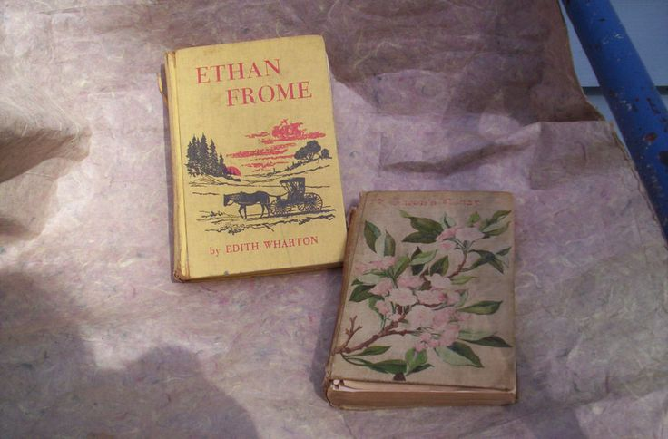 ethan frome essays - irony