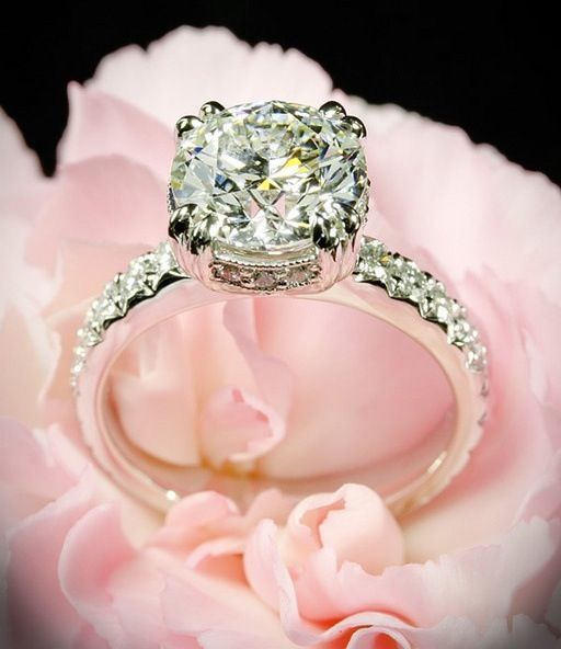 Really like this slim band rings and a smaller diamond would be ideal!