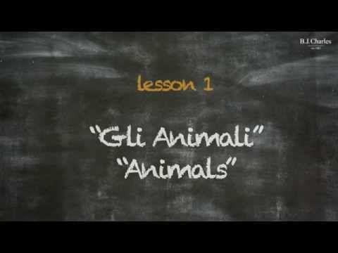 Giochiamo in inglese insieme a Miss Charles. Nell'episodio 1 iniziamo ad imparare i nomi di alcuni animali. http://www.bjcharles.it/