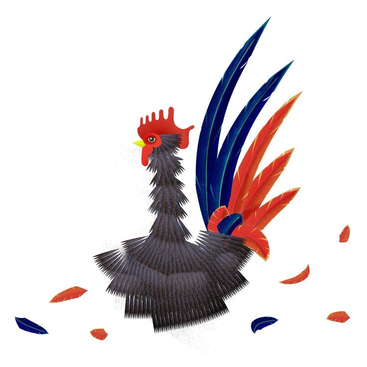 rooster illustration birds, new year, chinese  www.intersectionbase.com