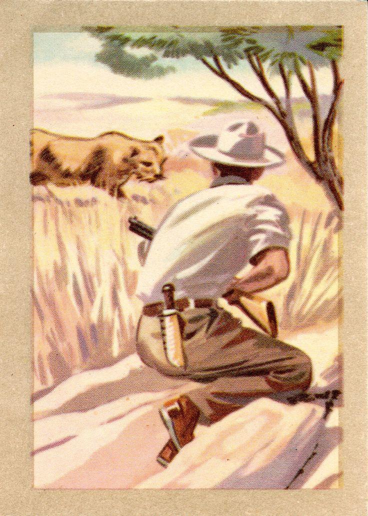 JACQUES SUPERCHOCOLAT - LES METIERS DANGEREUX: Le chasseur  de gros gibier (Chromos instructifs - 144)